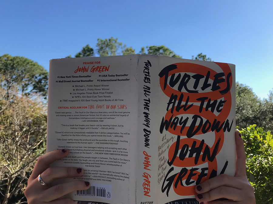 """""""Turtles All the Way Down"""" Book Review"""