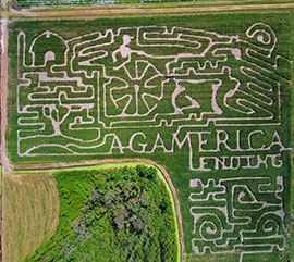 An aerial of Long and Scott Farms' 2018 corn maze. The farm partnered with Advocating Agriculture for the design of the seven acre maze. The maze is open from Oct. sixth through Dec. ninth.