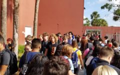 Students walk from class to class in between periods. Due to the current concerns about school safety, Lake Brantley has added new gates, regulations, and security guards.
