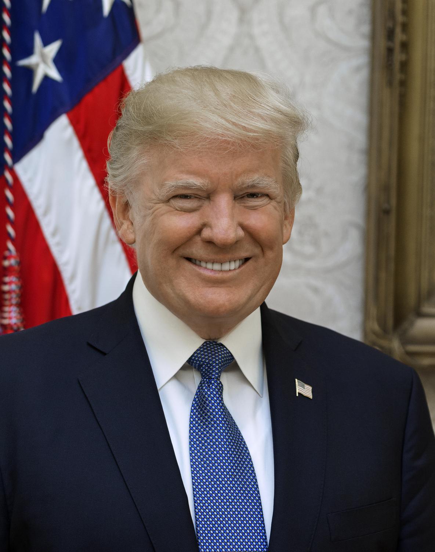 President Donald Trump's official portrait.