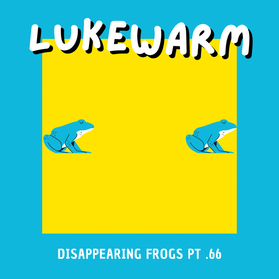 Disappearing Frogs pt .66
