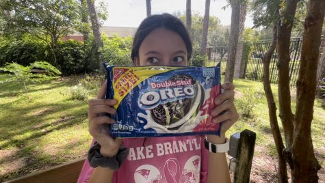 Junior Avery Ranum shares her thoughts on which level of stuff is the most appetizing in an oreo. I like the thins because they have more cookie than cream, and I like the cookie better.
